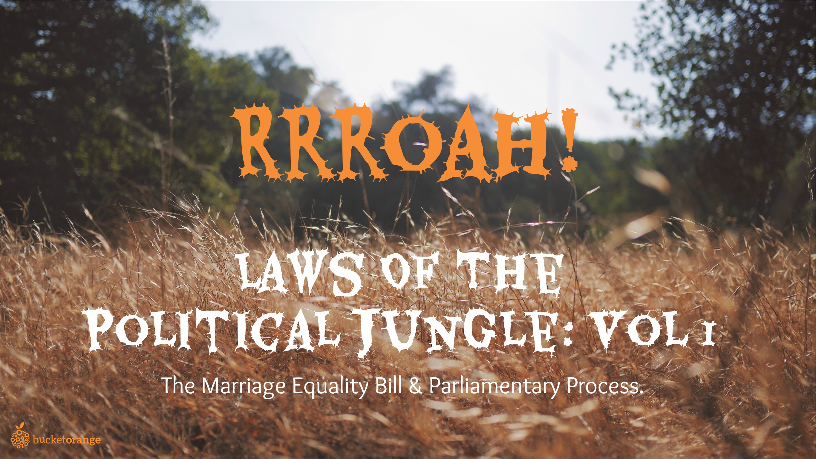 Laws Of The Political Jungle_High Res 2